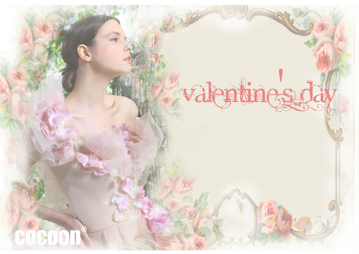 2014-valentine- day-promotion